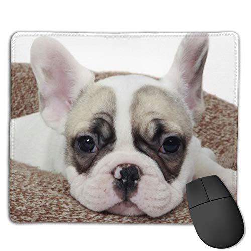 Joseph Mouse Pad,Non-Slip Waterproof Rubber Base Mousepad for Laptop-French Bulldog Puppy Lying