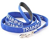 Dex-il Colour Coded Dog Warning Awareness Harnesses Leads Collars Coats - TRAINING DOG (Standard Lead 120cm)