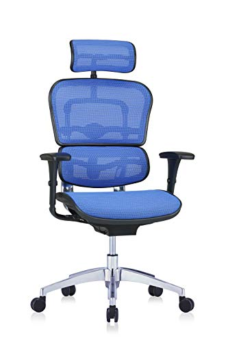 hjh OFFICE 652427 Profi Chefsessel ERGOHUMAN EDITION Netzstoff Blau Bürostuhl Drehstuhl ergonomisch...