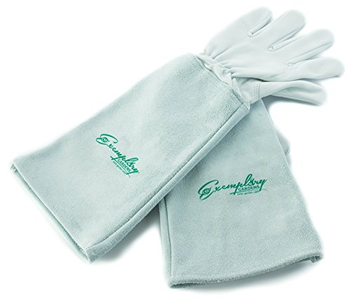 Rose Pruning Gloves for Men and Women. Thorn Proof Goatskin Leather Gardening Gloves with Long Cowhide Gauntlet to Protect Your Arms Until The Elbow (Small)
