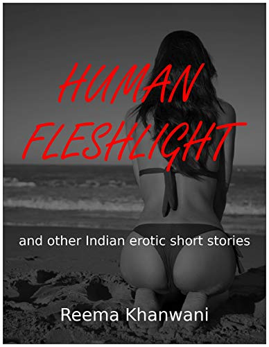 Human Fleshlight: A Collection of Erotic Indian Short Stories (English Edition)