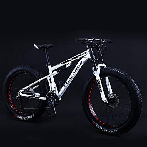 AISHFP 24Inch Fat Tire Mountain Bike, Double Disc Brake Cruiser Bicycle, All Terrain Damping Beach Snow Offroad Bikes, 4.0 Wide Wheels,C,24 Speed
