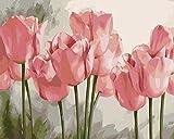 Cuadros Para Pintar Por Numeros Adultos,Flor De TulipáN Rosa DIY Pintura por Lienzos Para Pintar por Número De Kits Al Óleo Pintar con Pinceles y Pigmento acrílico,regalo de cumpleaños,50x40 Cm