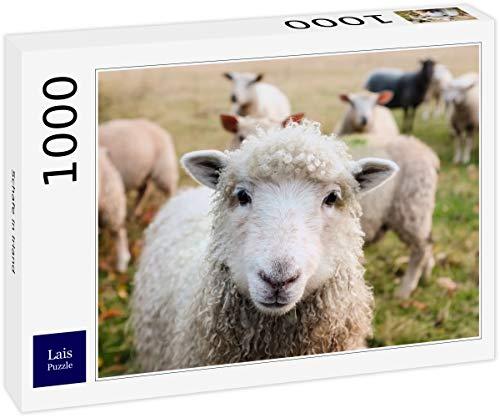 Lais Puzzle Schafe in Irland 1000 Teile