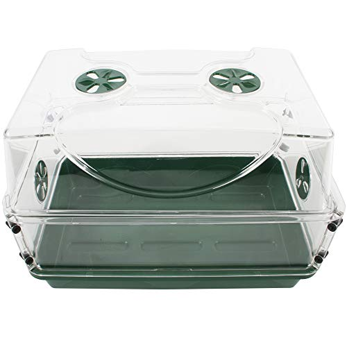 EarlyGrow 93763 Medium Seed and Herb Domed Propagator with Vented Side Height Extension, Extender, Green