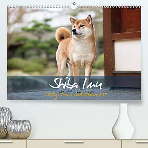 Shiba Inu - mutig, treu, selbstbewusst (Premium, hochwertiger DIN A2 Wandkalender 2022, Kunstdruck in Hochglanz): Der kleine Japaner mit dem großen ... 14 Seiten ) (CALVENDO Tiere)