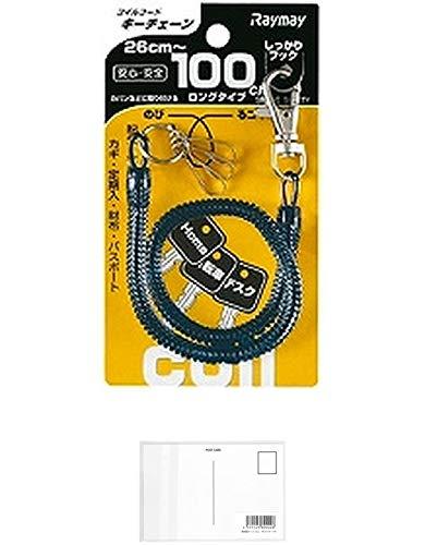 レイメイ藤井 コイルキーチェーン ブラック (26〜100cm) ブラック GLK301B 【× 2 パック 】 + 画材屋ドットコム ポストカードA