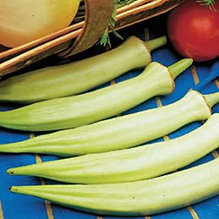 Park Seed Silver Queen Okra Seeds Pkt is 100 Seeds