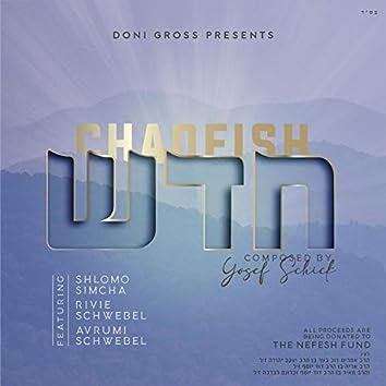 Chadeish (feat. Shlomo Simcha, Rivie Schwebel & Avrumi Schwebel)