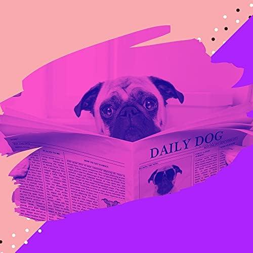 未解決の 犬のための音楽