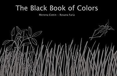 The Black Book of Colors features braille.