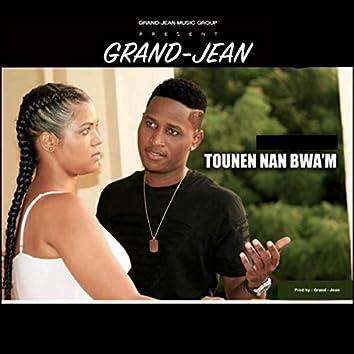 Tounen Nan Bwa'm