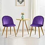 OFCASA Set di 2 Sedie da Pranzo in Velluto Sedie da Cucina Imbottite con Gambe in Metallo Moderne Mobili Viola