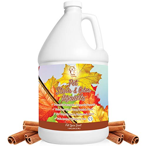 Pet Stain & Odor Miracle - The Best Enzyme Cleaner for Dog Urine Cat...
