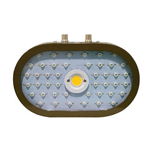 LED-lamp voor tuinbouw, LED Grow Light Full Spectrum 1100 W Dual Chip verstelbare groeilamp voor kamerplanten hydrocultuur