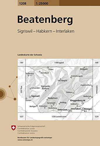 Swisstopo 1 : 25 000 Beatenberg: Sigriswil - Habkern - Interlaken (Landeskarte Der Schweiz)