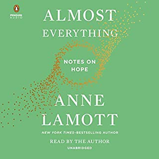 Almost Everything audiobook cover art