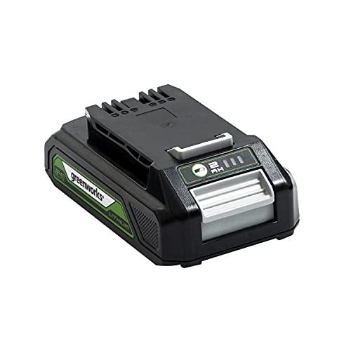 Greenworks Tools Batería G24B2 - Batería potente y recargable de Li-Ion de 24 V 2.0...