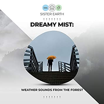 ! ! ! ! ! ! ! Dreamy Mist: Weather Sounds from the Forest ! ! ! ! ! ! !