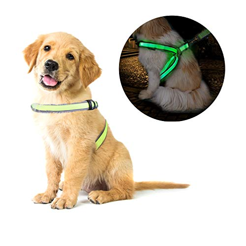 OBloved Dog Harness,LED Dog Vest USB Rechargeable Reflective Harness, Adjustable Lightweight Pet Vest for Large Medium Small Dogs, M Size