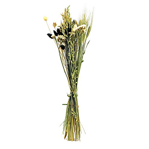 Dutch Masters in Dried Flowers Trockenblumenstrauß Cross Schwarz Weiß | Getrocknete Blumen | Deko Strauß mit Trockengräsern und Trockenblumen | 60 cm