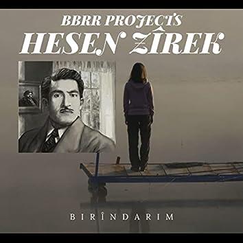Birîndarim (Renas Miran Remix)