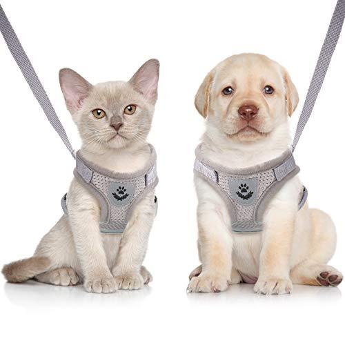 Sets de Arnés y Correa para Cachorros  Gatos Arneses de Chaleco Ajustables de Malla Suave a Prueba de Escape Correa de Pecho de Malla Transpirable para Perros, Gatos y Mascotas (Gris, XS)