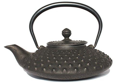 Tetsubin Iron Teapot - 5