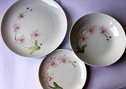 MaJe ceramista vajilla 18 piezas esmaltadas porcelana pintada a mano orquideas rosas.