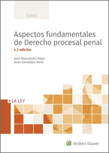 Aspectos fundamentales de derecho procesal penal (4.ª Edición) (TEMAS)