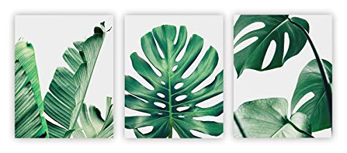 Home Wall Art Décor Plants Posters Oil Paintings Posters Prints Watercolor Green Leaf Pictures Canvas Wall Art Wall Decorations 8' x 10' 3 Pieces (UNFRAMED)
