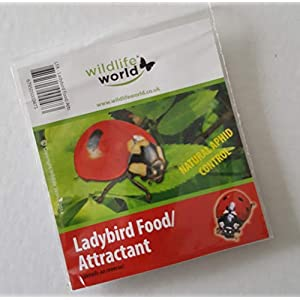 Wildlife World Ladybird Food Attractant