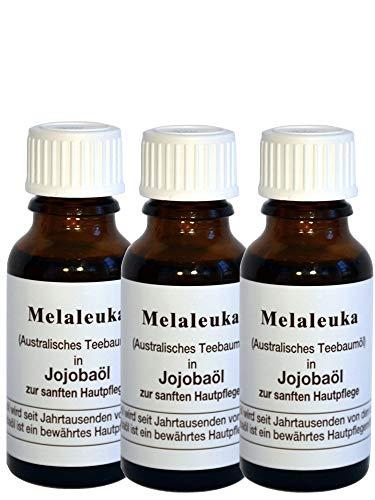 Melaleuka in Jojobaöl (Teebaumöl) - 3 x 20ml (Melaleuka alternifolia)