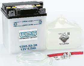 yamaha r5 battery