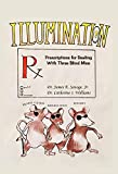 Illumination: Prescriptions for Dealing with Three Blind Mice: Mental Illness, Miseducation and Poverty (English Edition)