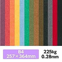 厚紙カラーペーパー『ケンラン(特色) 225Kg(=0.28mm)』 B4(257×364mm) 20枚【印刷・工作・名刺・カード・紙飛行機・ペーパークラフト】 こがね
