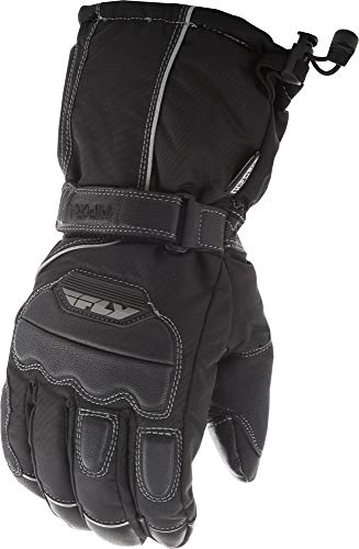 Fly Racing Aurora Gloves (Large)