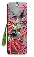 Hummingbirds - 3D Bookmark : BK26HB ハチドリ - 3Dブックマーク:BK26HB