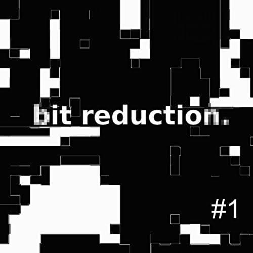 Bit Reduction