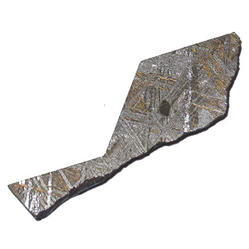 Namibia C50 Sammler Gibeon Meteorit Zeitloser Schatzstern Heilenergie Eisen Whale, 1.5 Inch Silber