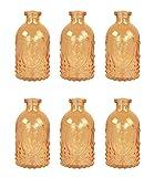 Bottiglia Decorativa Flacone Di Vetro 6 Pezzi Barattolo-sughero Vasetti Di Cork Decorazione Farmacia Bottiglia Bottiglia Liquore Vetro Da Farmacia Vintage Bicchieri - variopinto, 5 pezzi