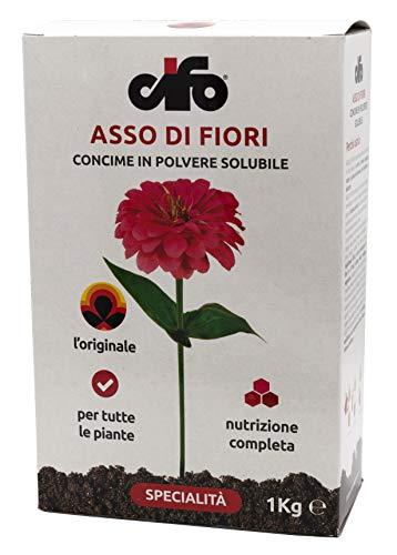 Cifo Asso di Fiori Concime in Polvere solubile per tutte le piante da balcone giardino ed orto 1 Kg