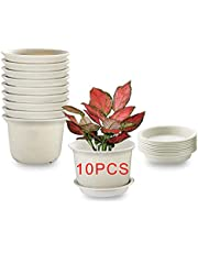 MOHENA 10PCS Plant Pots Indoor,Plastic Planter Pots with Saucer, Nursery Garden Pot with Drainage Hole and Tray for Flowers Herbs Succulents Cactus