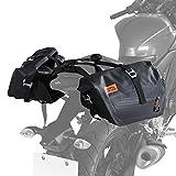 ドッペルギャンガー(DOPPELGANGER) ターポリサイドバッグ25 【250ccスポーツバイク専用の防水サイドバッグ】 容量25L サポートベルト・ハングベルトA・ハングベルトB付き DBT576-BK ブラック W40 ×L(D)21 ×H25cm