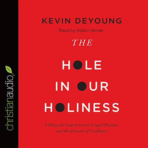 The Hole in Our Holiness cover art