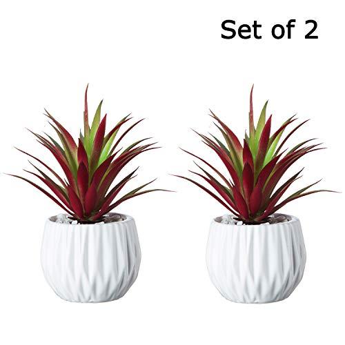 Artificial Succulent Plants in White Ceramic Pots - Fake Red Greenery Cacti Bonsai Plant Shelf Decor - Faux Grass Set (7.5 Inch, Red - 2 PCS)
