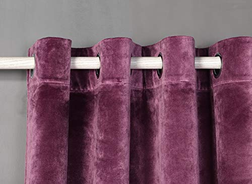 PimpamTex Blickdichter Samtvorhang, 1 Stück Ösenvorhang, Kälteabweisender Stoff, Verdunklungsgardine aus erstklassigem Samt für Wohnzimmer, Schlafzimmer (140 x 280 cm, Malvenfarbig)