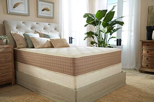 Eco Terra 11 Inch Queen Natural Latex Hybrid Medium w/Encased Coil Springs Mattress, White