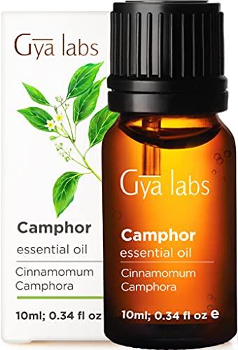 Aceite esencial de alcanfor para respirar de Gya Labs - Aceite de alcanfor natural para aliviar el dolor y el cuidado de la piel - 100 grado terapéutico puro para aromaterapia - 10 ml