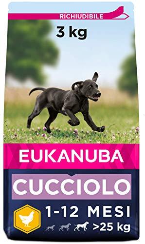 Eukanuba Cibo Secco per Cuccioli in Crescita, per Cani di Taglia Grande, Ricco di Pollo Fresco, 3 kg